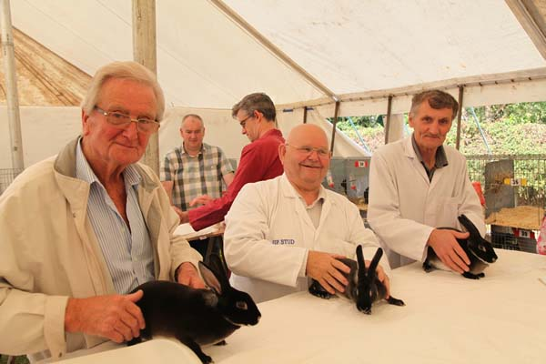 The Alrewas Show Rabbits page content image 1