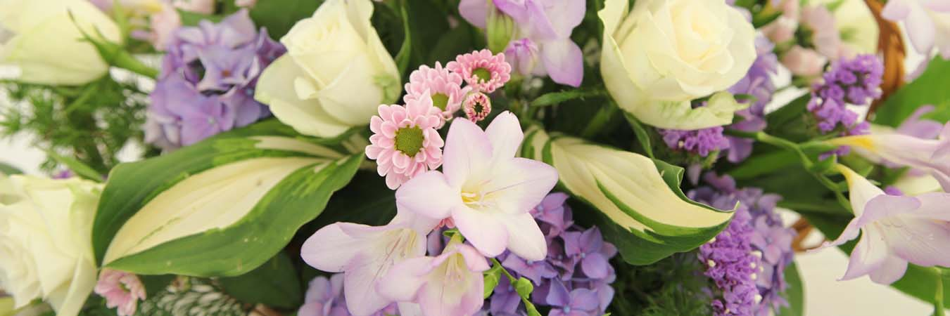 The Alrewas Show Floral Art page banner image