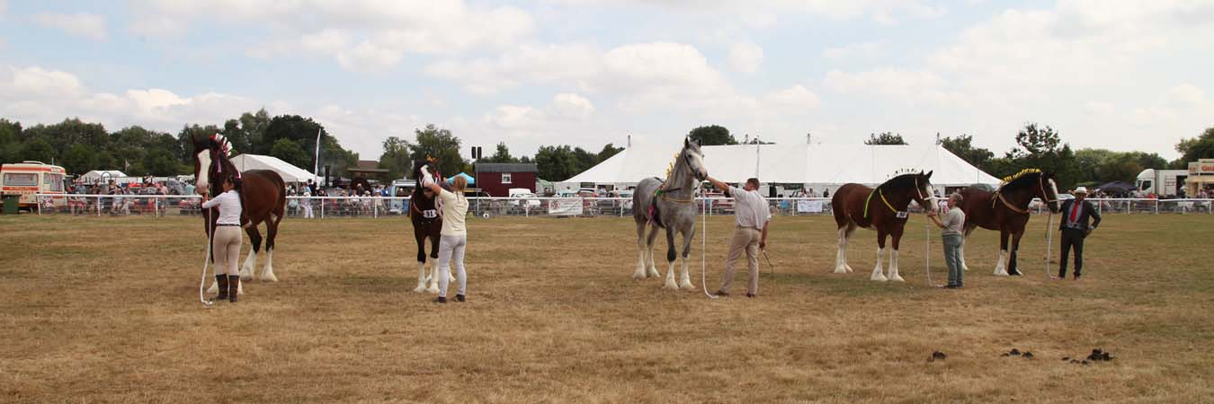 The Alrewas Show Shire Horses page banner image